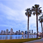 Downtown San Diego, California and Palm Trees
